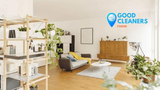 8 Wege zur natürlichen Reinigung der Luft zu Hause
